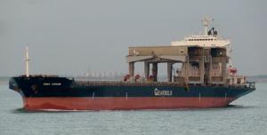 Photo of SWAN ARROW ship