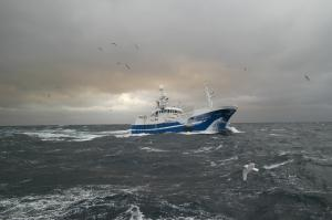 Photo of KAMARO ship