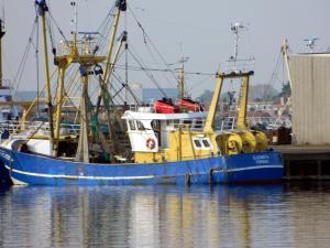 Photo of YE 139 ELIZABETH ship