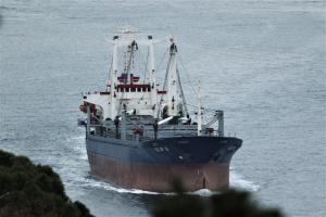 Photo of ELIF S ship