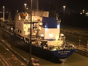 Photo of BALTIC MEADOW ship