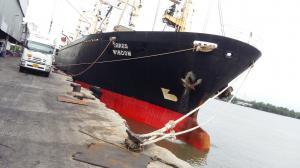 Photo of M/V.WISDOM ship