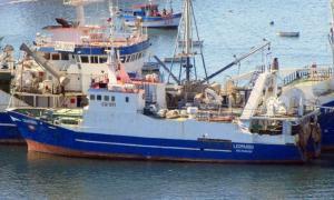 Photo of PAM LEOPARDO ship