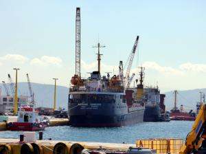 Photo of VASILIY BOZHENKO ship
