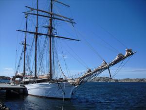 Photo of LADY ELLEN ship