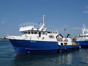 Photo of GOLOVIK ship