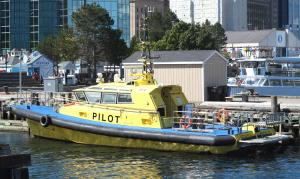 SCOTIA PILOT 8   >>8 (IMO 8657897) Photo