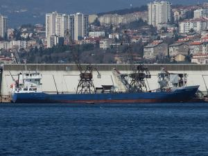 Photo of BASEL S3 ship