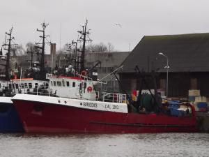 Photo of BRIEDIS ship