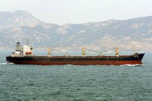 Photo of DING HU SHAN ship
