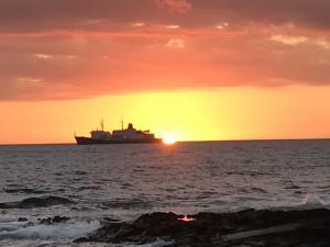 Photo of T/S GOLDEN BEAR ship