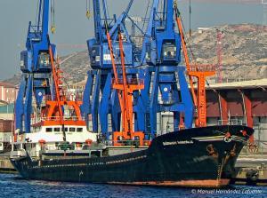 Photo of EMREM ship