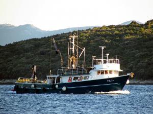 Photo of FULIJA ship
