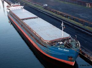 Photo of NIKOLAY MESHKOV ship