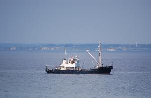 Photo of HONTE ship
