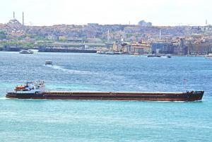 Photo of DMITRY DONSKOY ship
