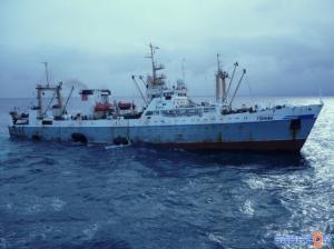 Photo of TUMNIN ship