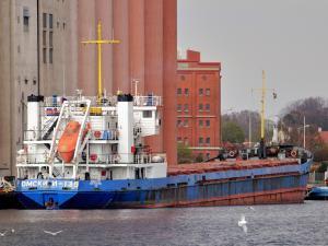 Photo of OMSKIY-135 ship