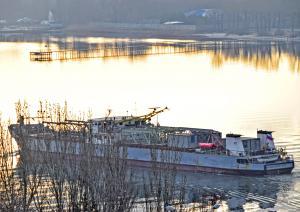 Photo of BEREZOVETS ship