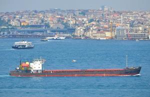 Photo of RODION OSLYABYA ship