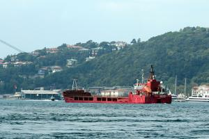 Photo of ACORUS ship