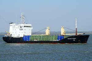 Photo of MEKHANIK FOMIN ship