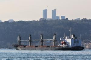 Photo of GRAIN GLORY ship
