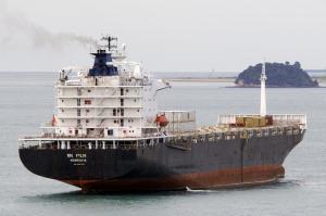 Photo of MSC PYLOS ship