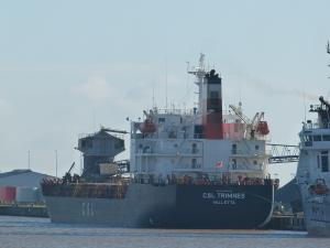 Photo of MV CSL TRIMNES ship