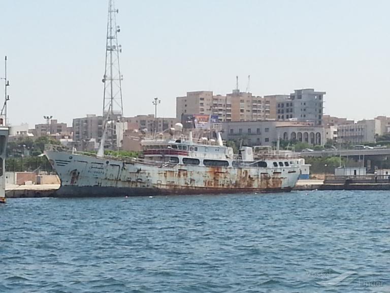 AL-SHAFQ photo