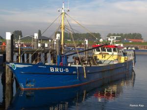 BRU-8 MARINUS (IMO 8911970) Photo