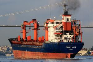 Photo of ZINNET METE ship