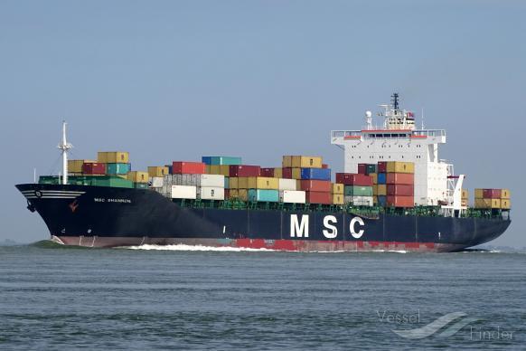 MSC SHANNON photo
