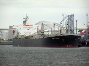 Photo of QINFA 8 ship