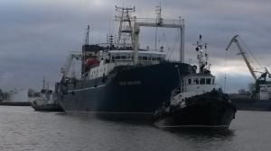 Photo of IOSIF SHMELKIN ship