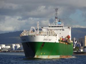 Photo of SEAROAD TAMAR ship
