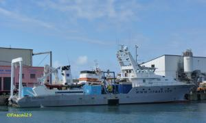Photo of JIF XPLORER ship