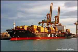 Photo of MSC NEDERLAND ship