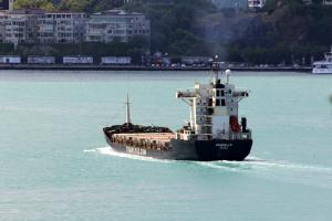 Photo of ANNABELLA 1 ship