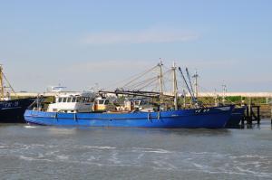 Photo of YE-69 ZWALUW ship