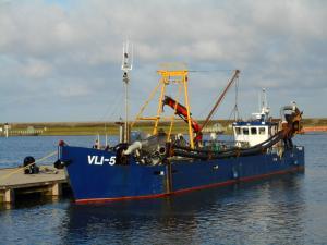 Photo of VLI 5 BLUE FIN ship