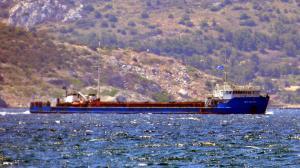 Photo of NIKA FORTUNA ship