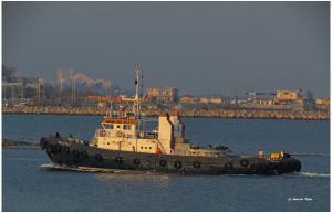 Photo of GALATI 7 ship