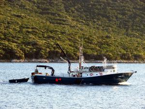 Photo of CAPTAIN STEVEN II ship