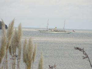 Photo of HAIDA 1929 ship