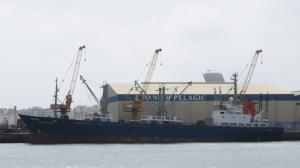 Photo of HAI FENG 896 ship