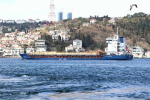 Photo of ARINDA JOY ship
