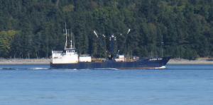 Photo of EASTERN   WIND ship