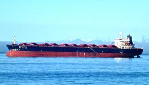 Photo of DELTA PRIDE ship