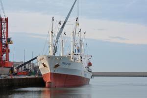 Photo of PRINCE OF SEAS ship